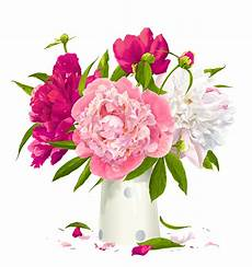 peony clipart free peonies cliparts free clip free clip