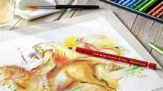 Malvorlagen Aquarell Stifte Malvorlagen Tiermotive Wasserfarben Stifte Buntstifte