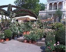 comune di terrazzo mostra mercato piante fiori ed arredi artigianato