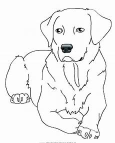 lab dogs coloring pages at getdrawings free