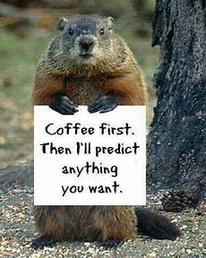 the groundhog day 2019 will the little groundhog see his shadow this year