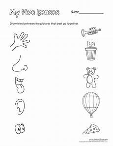 five senses printable tim s printables