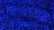 Wallpaper Pattern Blue
