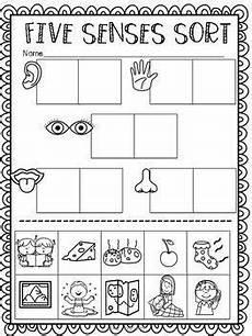 the 5 senses activities worksheets 12584 five senses ultimate pack senses preschool five senses preschool five senses kindergarten