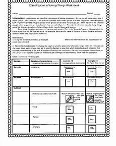 sorting living things worksheets 7894 classification of living things worksheet by biology buff tpt