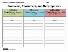 plants as producers worksheets 13617 graphic organizers organizers and graphics on