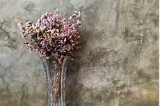 fiori secchi on line fiori secchi on line fiori secchi fiori secchi