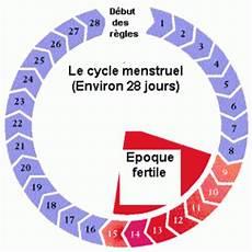 La Perle اللؤلؤة الوردية Zoom Sur L Ovulation