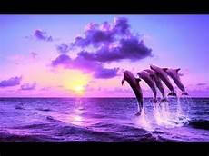 positive energy cleanse 528hz music let go feel free