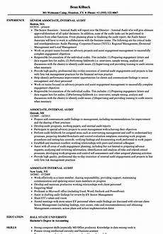 associate internal audit resume sles velvet