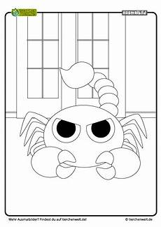 Malvorlagen Quiz Malvorlage Skorpion