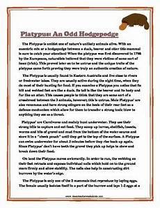 reading comprehension grade 6 6th grade non fiction story platypus