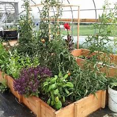 hochbeete selber bauen und bepflanzen greenhouse prairie plum farm