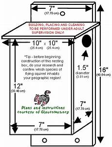 flying squirrel house plans on two acres in town buster 2 squirrel home squirrel