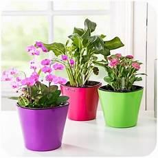 vasi in plastica colorati vasi di plastica vasi realizzare e decorare vasi di