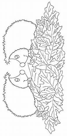 Igel Ausmalbild Erwachsene Ausmalbild Igeln Igeln Igel Ausmalbild Herbst