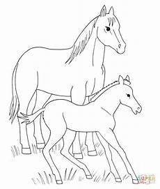 ausmalbild pferd und fohlen ausmalbilder kostenlos zum
