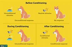 classical conditioning how it works with exles