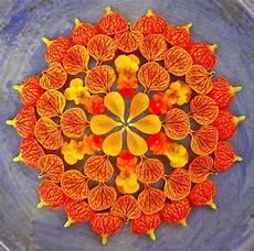 Mandala Blumen - flower mandalas by kathy klein colossal