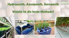 Hydroponic System Selber Bauen