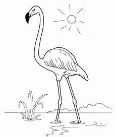Malvorlage Flamingo Einfach Top 20 Flamingo Ausmalbilder Beste Wohnkultur