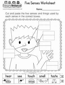 five sense worksheet new 989 five sense organs worksheets for grade 2