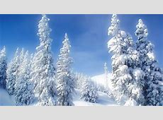 Winter Wonderland Desktop Wallpaper (47  images)