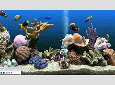 How to get an Aquarium as your Desktop Background (Xp