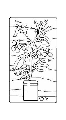 Ausmalbilder Blumen Im Topf Bild Blume Im Topf Ausmalbild Malvorlage Blumen