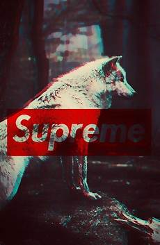 supreme wolf wallpaper the 25 best supreme wallpaper ideas on cool
