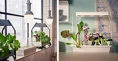 ikea launches indoor garden that can grow food all year the hearty soul
