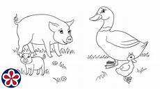 farm animals and their babies coloring pages 17434 farm animals and their babies coloring pages teachersmag
