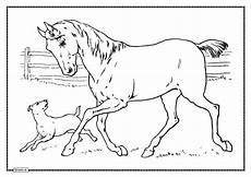 Malvorlage Pferd Und Hund Kwerx De Impressionismus Express Malschule Und Mehr