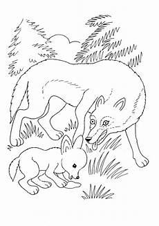 Malvorlagen Tiere Fuchs Asumalbilder Ausmalbilder Fuchs