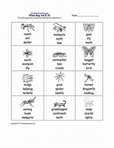 grade 3 science worksheets insects 12532 insects worksheets free draw and write 3 bugs printable worksheet with images insects