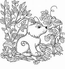 rainforest animals coloring pages preschool 17131 image result for forest animals coloring pages coloring page puppy coloring pages santa