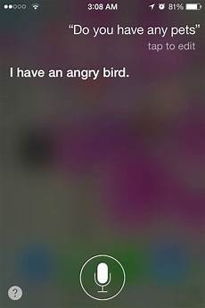 Lustige Fragen An Siri - the 24 funniest siri answers that you can try with your iphone
