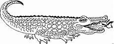 Malvorlage Kostenlos Krokodil Gratis Ausmalbilder Krokodil Free Ausmalbilder
