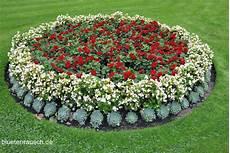 Blumenbeete Gestalten Bl 252 Tenrausch