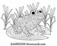 Frosch Ausmalbild Erwachsene Clipart Buch Frosch K10282282 Suche Clip