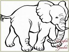 12 Sketsa Gajah Dan Cara Menggambarnya Mudah Banget