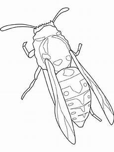 insekten malvorlagen pdf aiquruguay