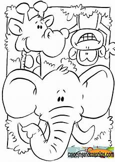 ausmalbilder jungle tiere jungle animals coloring pages coloring coloring