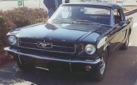 Just Mustangs