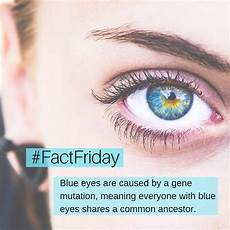 Factfriday Blue Are Caused By A Coopervision