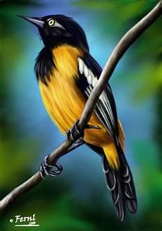 simbolos naturales de venezuela dibujo turpial by fernl on deviantart