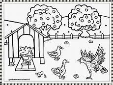 Gambar Mewarnai Ayam Gambar Mewarnai