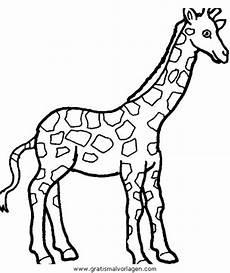 giraffen 36 gratis malvorlage in giraffen tiere ausmalen