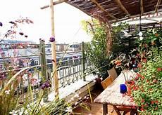 Plantes Balcon Exposition Sud D 233 Co Clem Around
