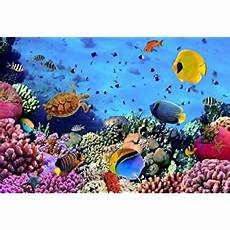 5x3ft 7x5ft 9x6ftsea World Underwater Coral by Leowefowa 5x3ft Vinyl 3d Underwater World